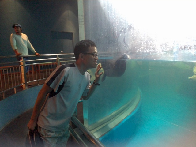 All photos from now onward are taken at Underwater World which is located at Pantai Cenang. Entrance fee is RM30. Overall, I would sum up that it is a mild version of combination of KL Bird Park and Aquaria (KLCC). But the uniqueness of this Underwater World is ...