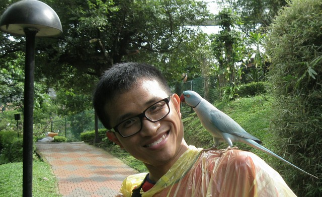 Close encounter with a parrot :)