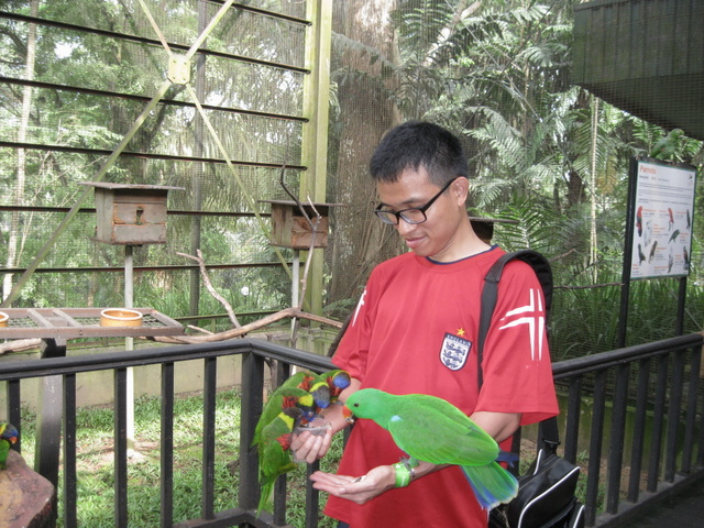 Feeding parrots 'kua chi'. If you bring it yourself, you could save up some. Otherwise, buy from there is RM2.