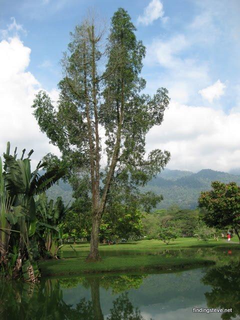 taiping_lake_garden_5